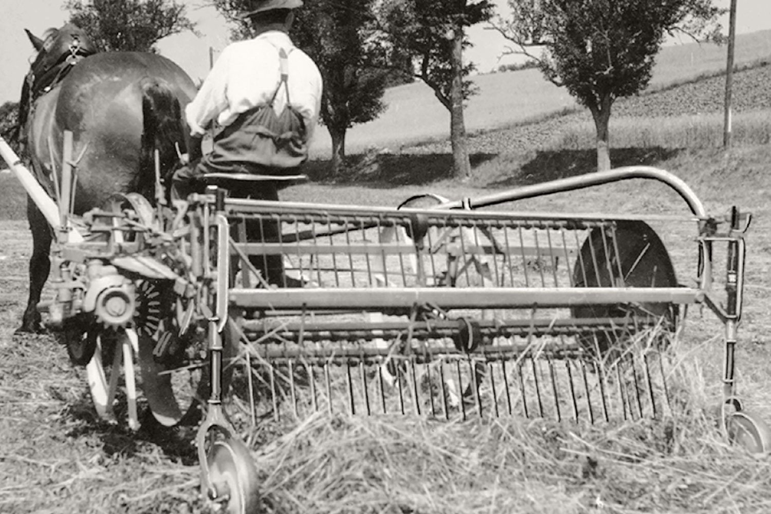 "A PÖTTINGER swath rake in action during harvesting in 1949. The ""tractor"" has an output of 1 horsepower."