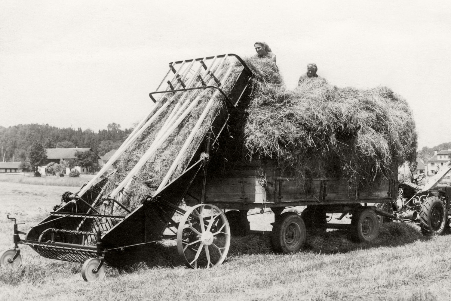 1951: The hay harvest has never been so quick and easy as with the hay loader from Grieskirchen.